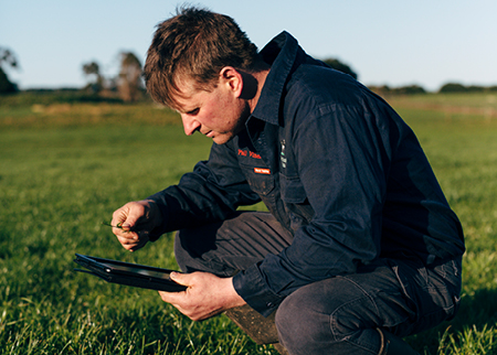 Farmer using ipad to evaluate his pasture